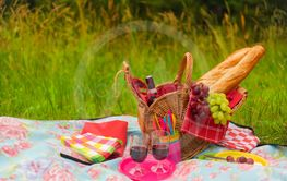 Having summer picnic outdoor