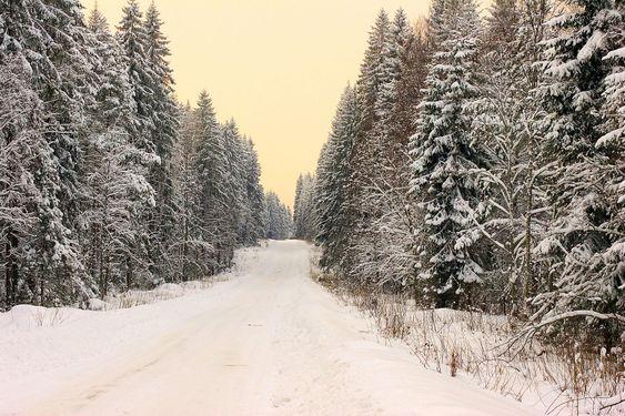 Talvi-tien