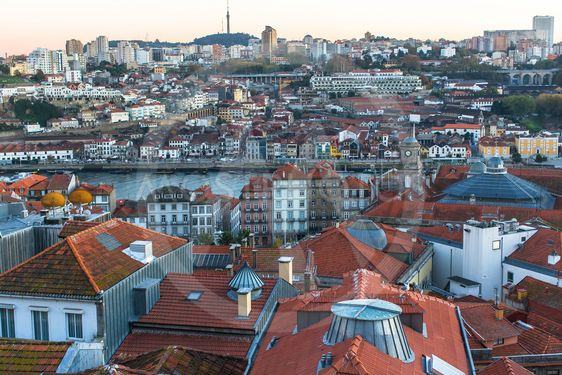 Bird\'s-eye view of old Porto downtown, Portugal.