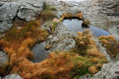 Autumn in Bohuslan