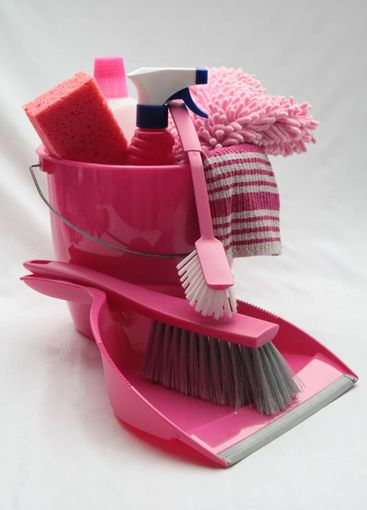 pink bucket with cleaning equipment
