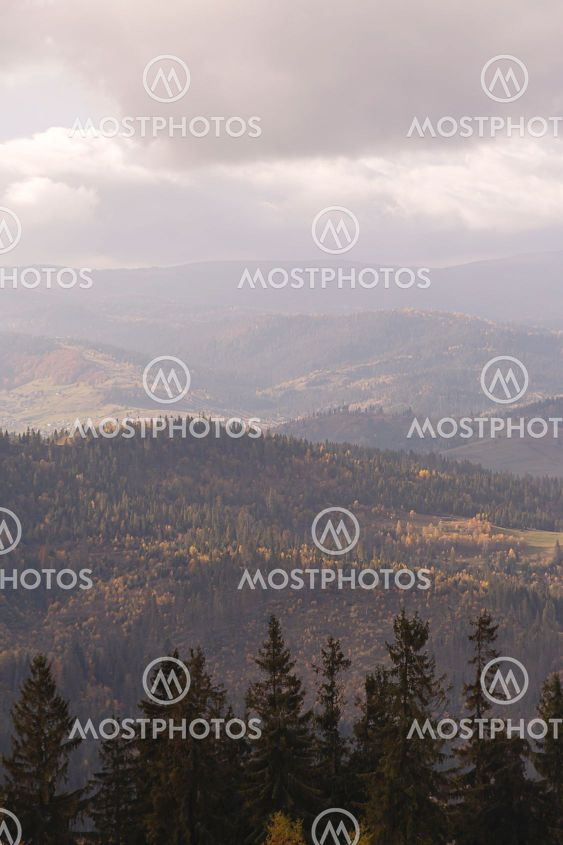 Autumn natural gloomy background cloudy day in the...
