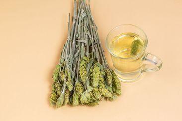 Sideritis scardica brewed tea