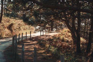 Horizontal shot of the path near the coast in Spain