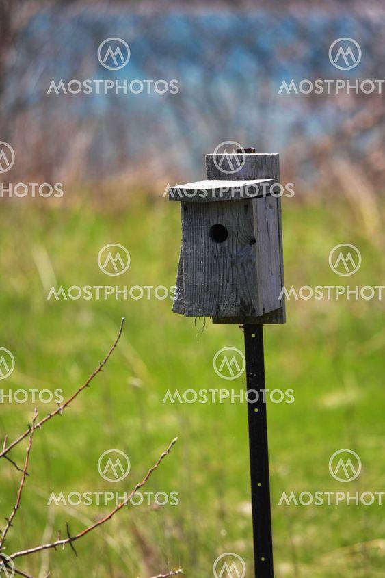 A Single Birdhouse