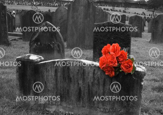 Tyhjä Hautakivi hautausmaa punaisia ruusuja nipussa kanssa