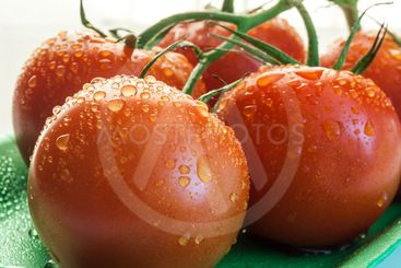 Close up of red tomatoes