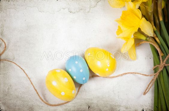 Easter background with painted eggs and blooming daffodils