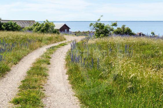 Vägen till Äleklinta sjöbodar på Öland