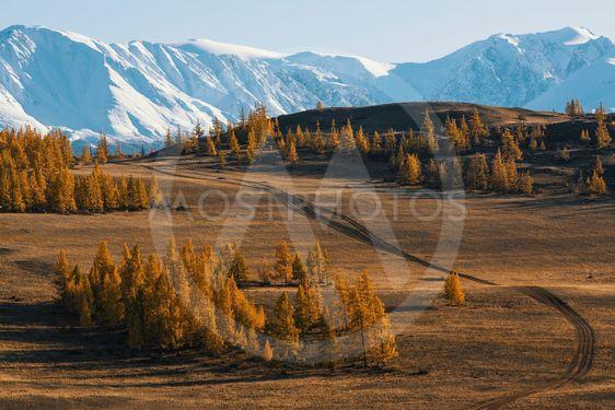 Valley and Snow Mountain, Altai mountains, Chuya ridge,...
