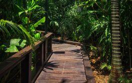Nice footpath in Australia, Brisbane, South Bank...