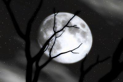 Moon Scenery