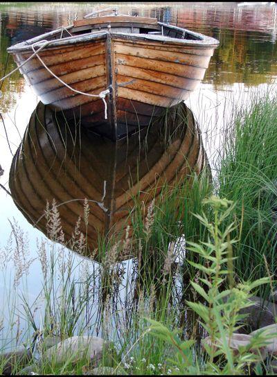 Den gamla båten