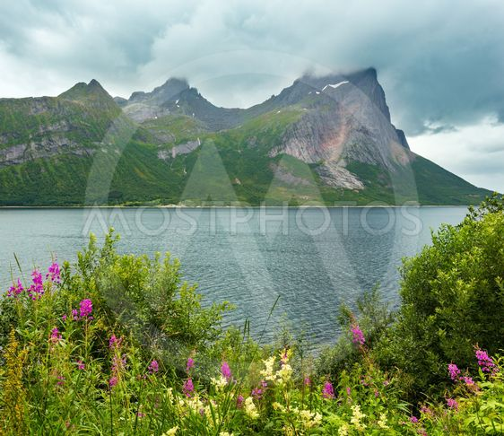 Fjord summer cloudy view, Norway