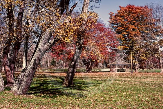 Allaire Park in Howell New Jersey if the fall