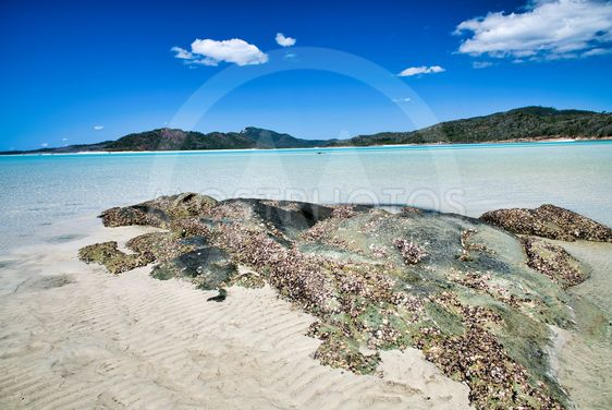 Crystal clear water of Whitsunday Islands, Australia