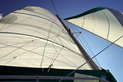 Backlit Sails Unfurled