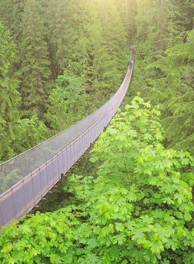 Capilano bridge. North Vancouver. Canada.