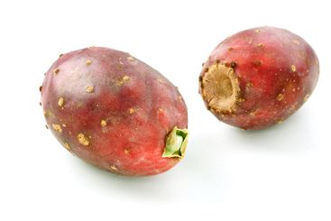 Two Cactus Pears