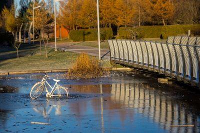 Bike in pond
