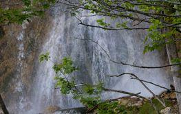 _MG_137215840 natur Kroatien
