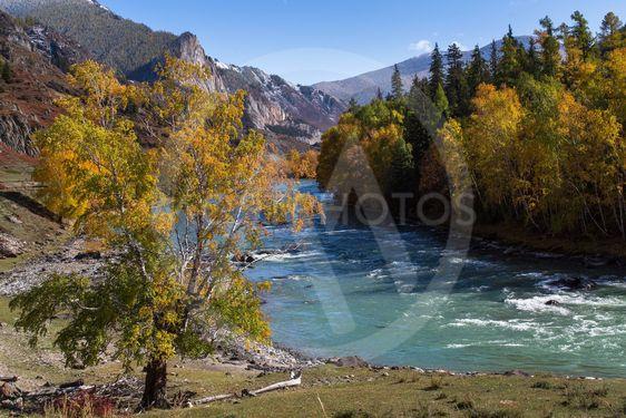 View of Katun River, Altai Republic, Russia.