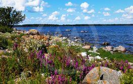 Östersjökusten