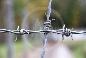 Barbwire in the Dachau Concentration camp memorial