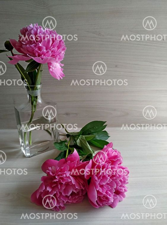 Two peonies on a light wood table and one peony standing...