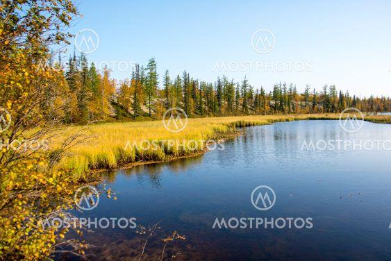 Озеро в лесу,осенний пейзаж