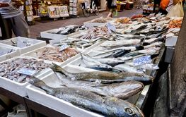 Fish stand at the open street market in the historic...