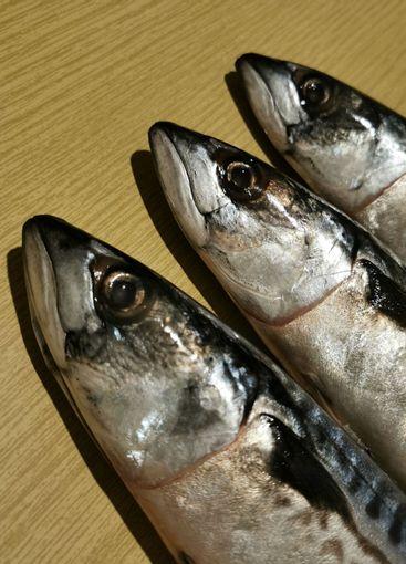 Three mackerel heads