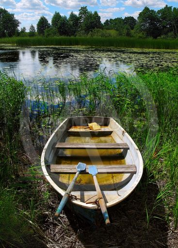 Rowing boat on the shore line