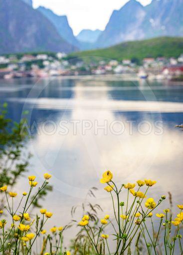 Norwegian fishing village, Reine Lofoten Norway