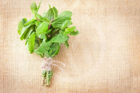 Bunch of mint on a burlap background