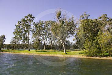 Landscape Waterscape, Rathmines Park, Lake macquarie.