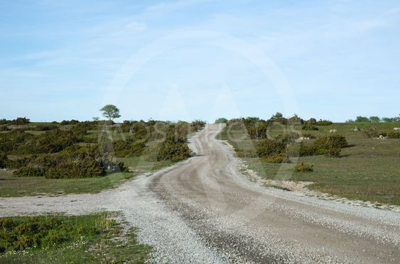 Winding gravel road through a landscape with lots of...