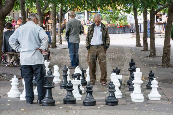 spela schack på Kungsträdgården