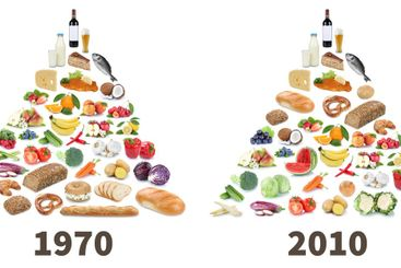 Food pyramid healthy eating comparison fruits and...