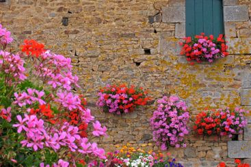 House with flowers, Brittany