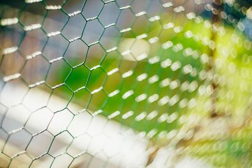 The slave's net. Green mesh slave on a green background