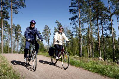 mid-adult couple on bike