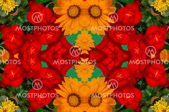 wallpaper, background with a bouquet of colorful...