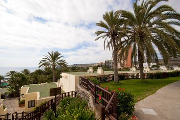 Palm trees and houses on Canary Islands