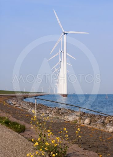 Colonade of windmills, with a blooming wallflower in front