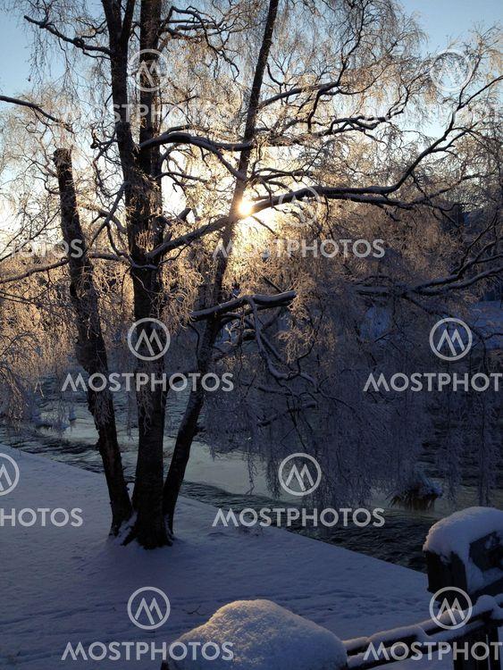 Vinterfrost