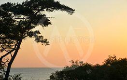 Solnedgång vid en strand på Gotland 6