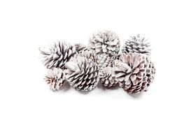 Decorative pine cones closeup on a white background.