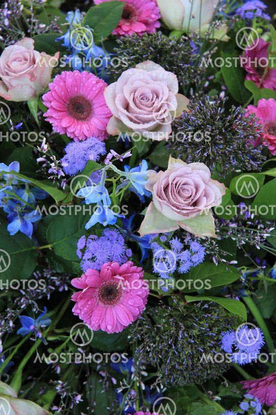 purple rose and pink gerbera